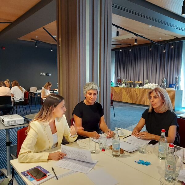 """""""Board Simulation"""" group work within the framework of the  """"Women on the Board of Directors"""" training"""